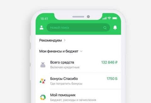 Баланс карты в мобильном приложении